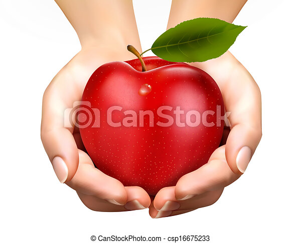 ed ripe apple in a hands. Concept of diet. Vector. - csp16675233