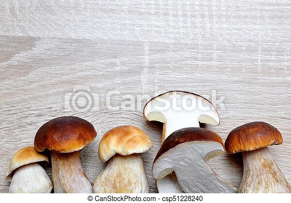 Edible mushroom Boletus - csp51228240