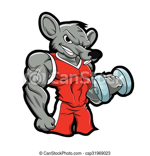 edifício corpo, ginásio, treinamento, rato - csp31969023