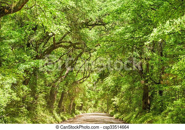 Edisto Island South Carolina - csp33514664