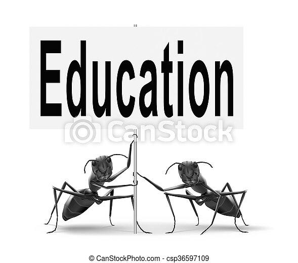 Educación - csp36597109