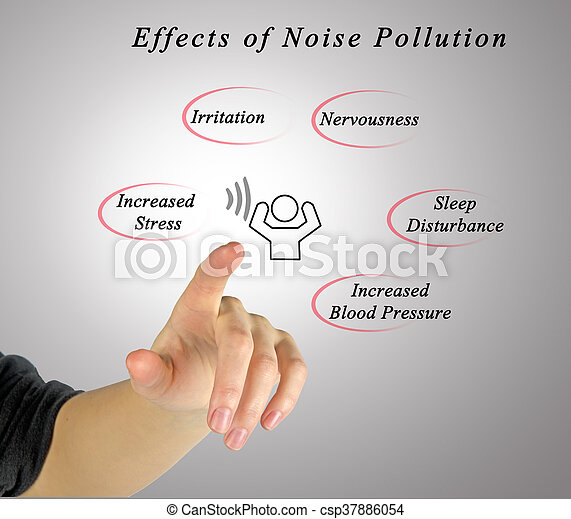 noise pollution essay