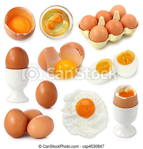 Egg collection - csp4530847