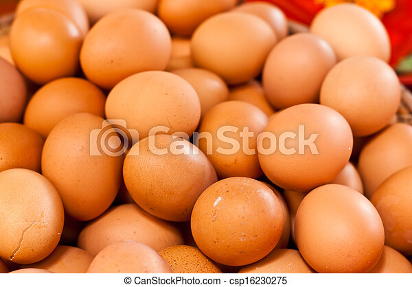 egg - csp16230275
