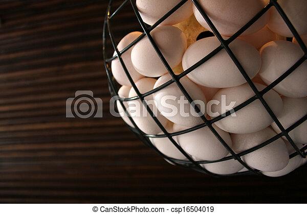 egg - csp16504019