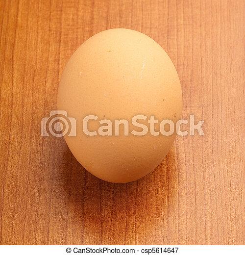 egg - csp5614647
