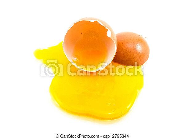 egg - csp12795344