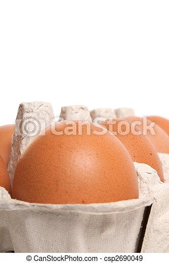 egg - csp2690049