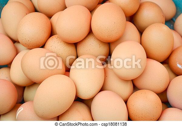 egg - csp18081138