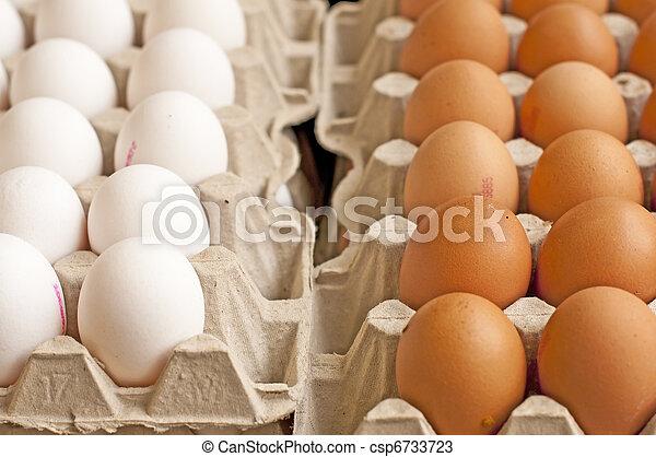 egg - csp6733723