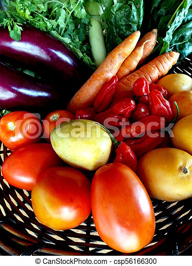 Eggplant, carrots and other vegetables in the basket - csp56166300