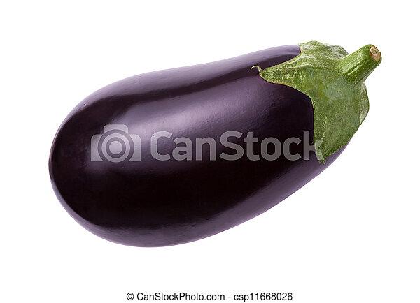 Eggplant Isolated - csp11668026