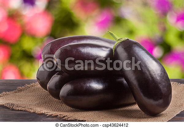 eggplant with a napkin of burlap on wooden table blurred green background - csp43624412