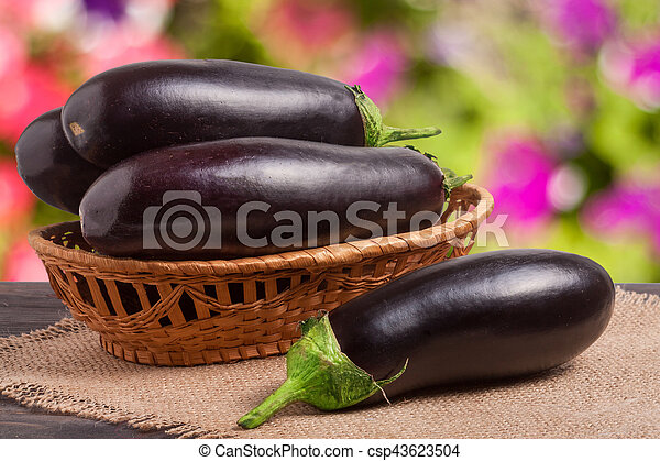 eggplant with a napkin of burlap on wooden table blurred green background - csp43623504