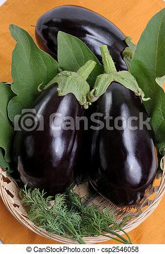Eggplants - csp2546058