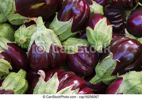 Eggplants - csp16256067