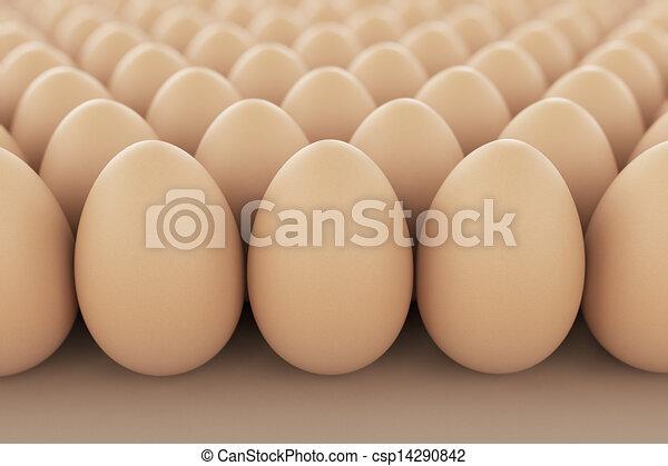 eggs. - csp14290842