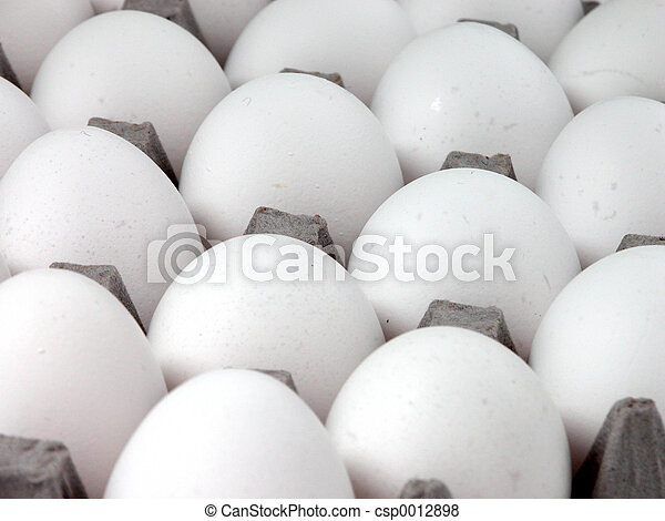 Eggs Eggs Eggs - csp0012898
