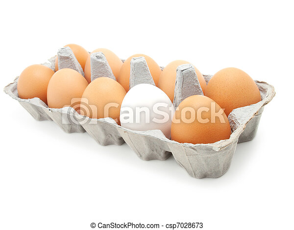 eggs in a carton on white background - csp7028673