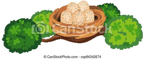 Eggs in the bird nest on tree branch - csp84342674