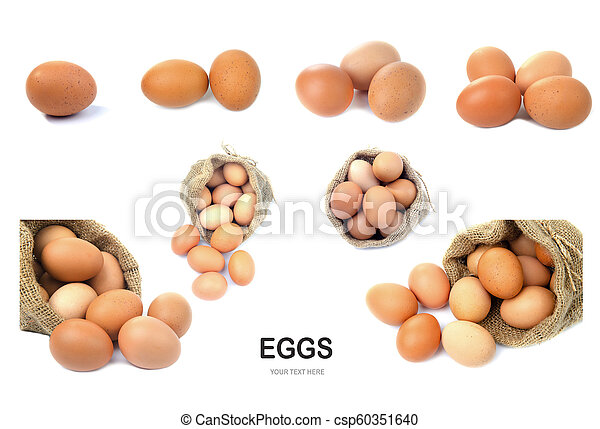 Eggs isolated on white background. - csp60351640