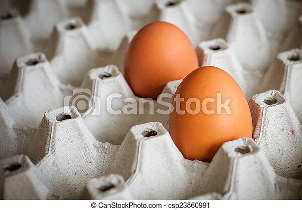 eggs - csp23860991