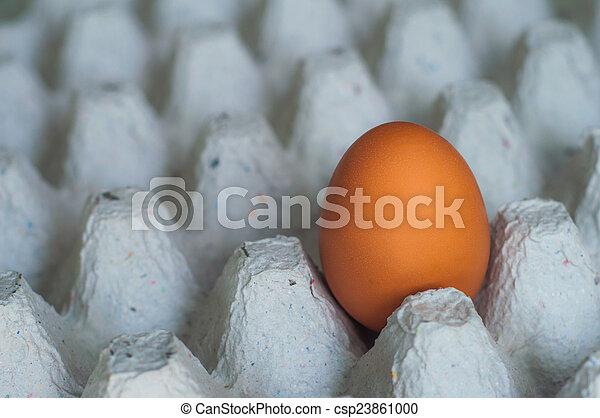 eggs - csp23861000