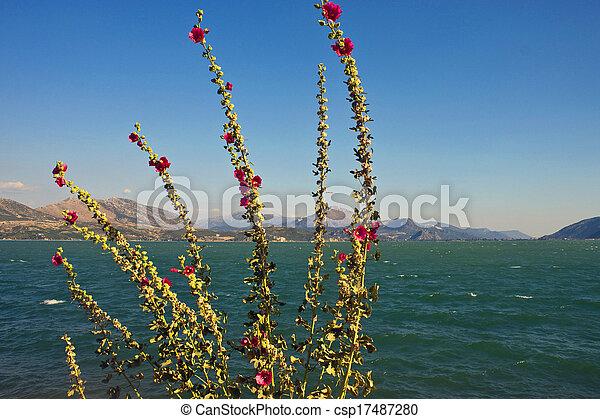Egirdir lake with flowers, Turkey - csp17487280