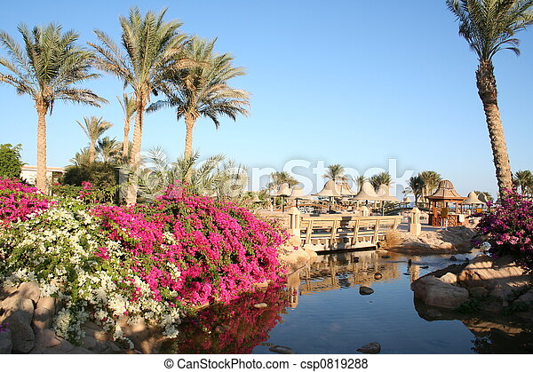 Egypt. Resort  - csp0819288