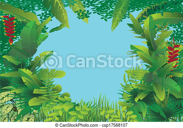 egzotyczny, tropikalny las - csp17568107