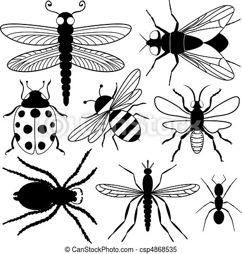 Eight Insect Silhouettes - csp4868535