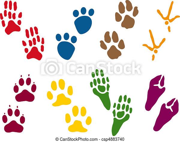 Eight sets of Animal Tracks - csp4883740