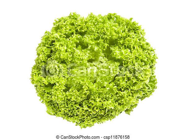 Eisberg Salat Grün Hintergrund Frisch Weißes