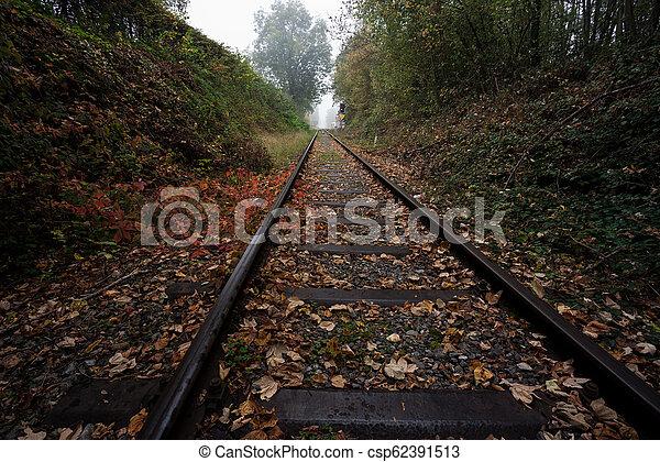Eisenbahn im Wald - csp62391513