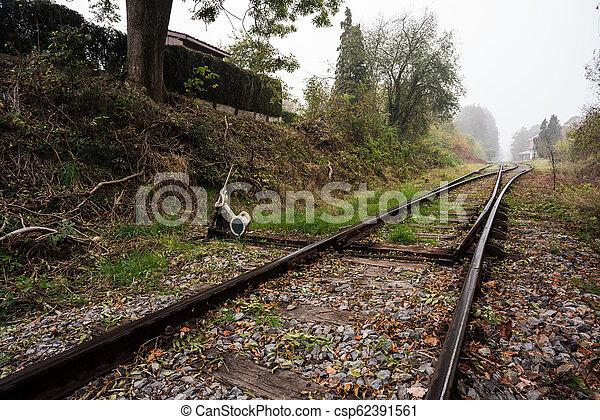 Eisenbahn im Wald - csp62391561