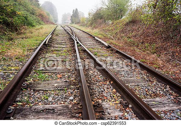 Eisenbahn im Wald - csp62391553