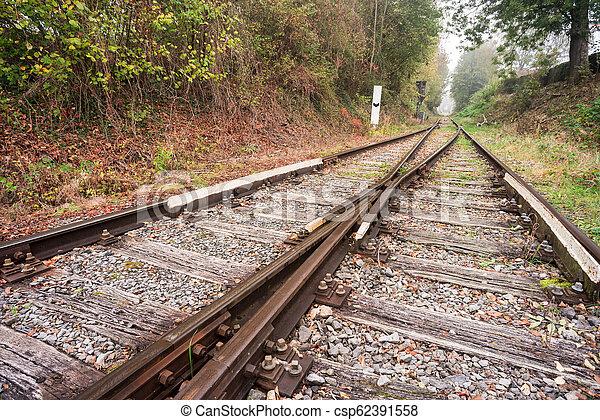 eisenbahn, wald - csp62391558