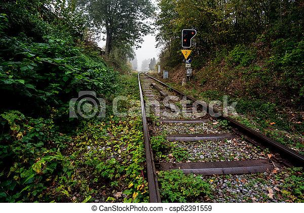 eisenbahn, wald - csp62391559