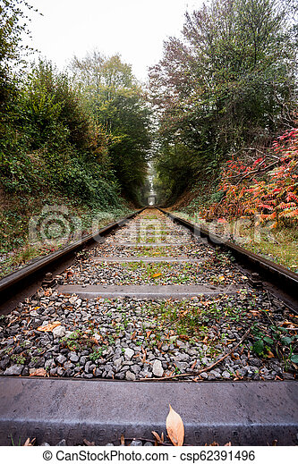 Eisenbahn im Wald - csp62391496