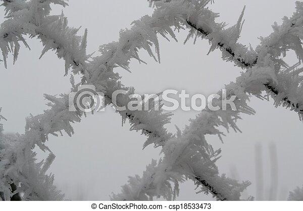 Eiskristalle am zaun. Raureif auf maschendrahtzaun -... picture ...