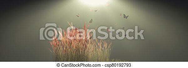 el asomar, sobre, mariposas, plantas - csp80192793