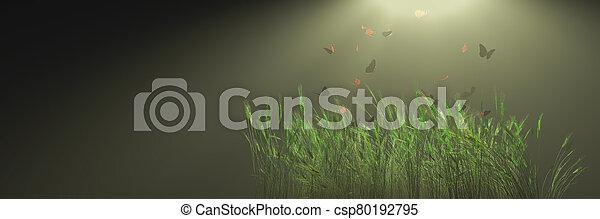 el asomar, sobre, mariposas, plantas - csp80192795