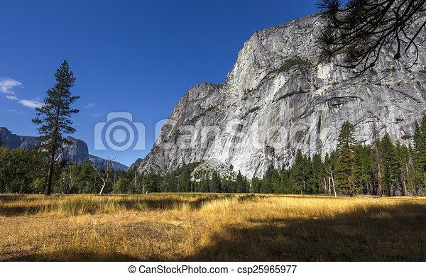 El Capitan, Yosemite national park - csp25965977