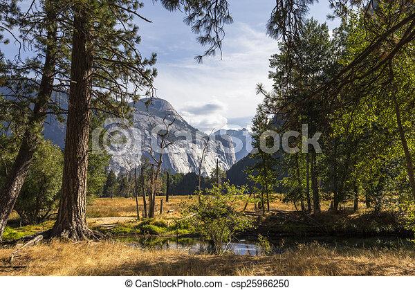 El Capitan, Yosemite national park - csp25966250
