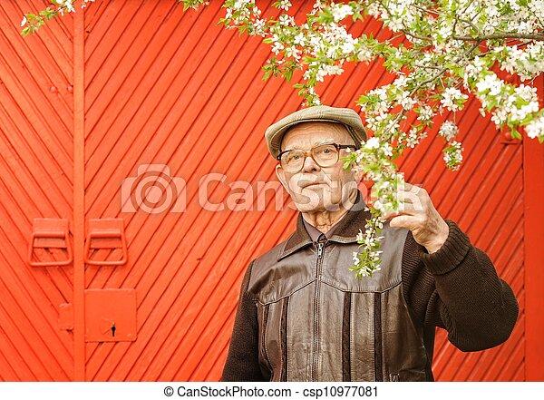 Un anciano en su jardín - csp10977081
