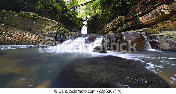 El Yunque National Forest - csp5307170