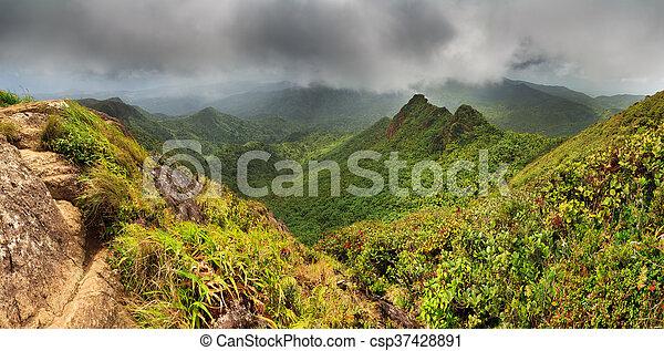 El Yunque panorama - csp37428891