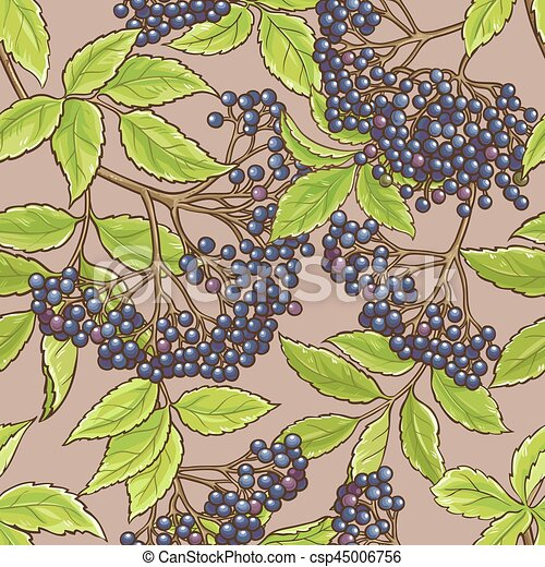 elderberry seamless pattern - csp45006756