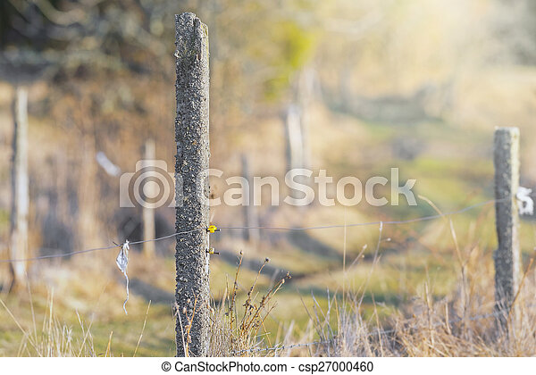 Electric fence post fencing a green grass field - csp27000460