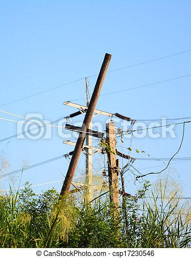 electrical bamboo post - csp17230546